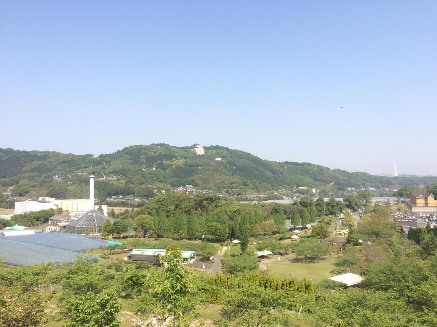 写真 2017-05-10 11 26 11 (3)